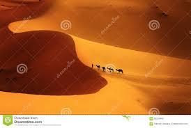 what color is orange color of the desert stock photo image of tuareg landscape 59216462