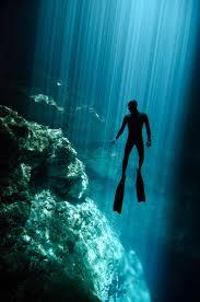 203 best free diving images on pinterest scuba diving