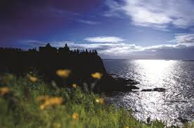 dunluce castle medieval irish castle on the antrim coast bushmills