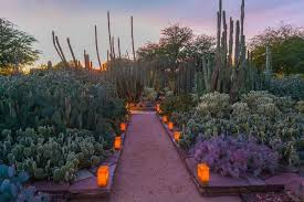 Scottsdale Az Botanical Gardens Attractions Attractions In
