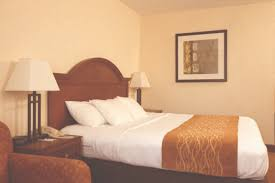 Comfort Inn Baltimore Md Bowie Md Guest Rooms Comfort Inn Bowie Conference Center Hotel