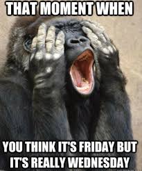 Its Friday Funny Meme - 35 most funny monkey meme pictures and images
