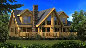 shed style house evolveyourimage