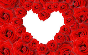 roses and hearts roses heart wallpapers hd wallpapers