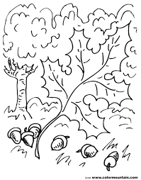 oak leaf coloring page create a printout or activity
