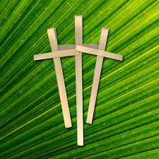 palm crosses for palm sunday dried palm crosses from africa concordia supply