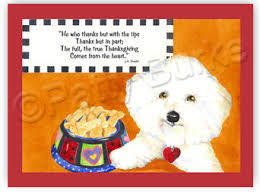 heartfelt impressions maxims bichon frise thanksgiving greeting