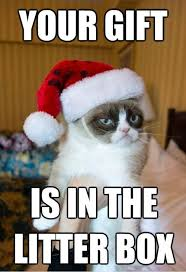 Meme Gifts - a belated gift from grumpy cat grumpy cat captions and funny