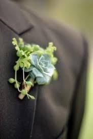 succulent boutonniere wedding ideas succulent weddbook