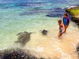 Luxury Homes Oahu by Beachfront Luxury Home With Spacious Yard North Shore Of Oahu