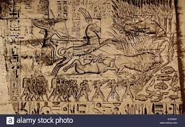 hunting egypt stock photos hunting egypt stock images alamy relief of pharaoh ramesses iii bull hunting scene carved on pylon wall of medinet habu