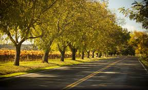 kentucky backroads map explore the five wineries on the northern kentucky back roads wine