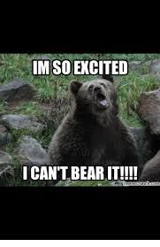 Im So Excited Meme - im so excited i can t bearit meme crunch com meme on sizzle