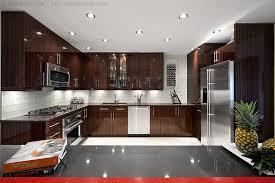 nice kitchen nice kitchens 16 inspiring ideas kitchen fitcrushnyc com