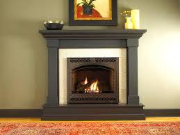 beautiful small gas fireplace suzannawinter com