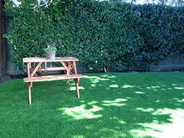 artificial grass iseley real estate agents irvine california