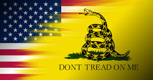 Raleigh Flag Gadsden And American Flags Merged In Public Domain The Worst