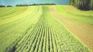 chambre d agriculture de picardie se convertir chambres d agriculture de picardie concernant chambre