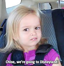 Disneyland Meme - what s in a meme memes meme and humor