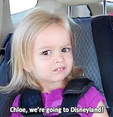 Chloe Disneyland Meme - what s in a meme memes meme and humour