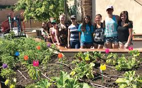family vegetable garden scouts grow community garden thousand oaks acorn