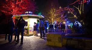 national zoo christmas lights dc life winter in dc bucket list park chelsea