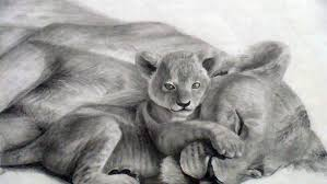10 cool lion drawings inspiration hative