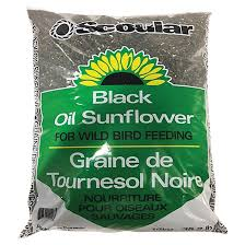 sunflower seeds for birds rona