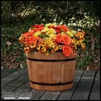 half wine barrel planters cedar barrel planters whiskey barrel