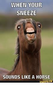 Sneeze Meme - when your sneeze sounds like a horse funny sneezing meme on me me