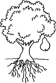 clipart coloring tree collection