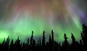 tripping the northern lights i science