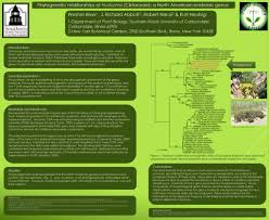 which plant was native to the new world research u2013 j richard abbott u2013 botanist