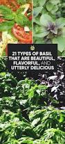 Types Of Kitchen Garden 1881 Best Gardening Images On Pinterest Gardening Urban
