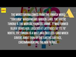 where did the word tundra come from