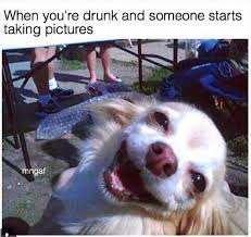 Drunk Friend Memes - 11 memes to send to your friend that always drunk the hot feed