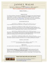 Classic Resume Examples Can Chemosynthesis Occur Cover Letter It Support Analyst Marketing