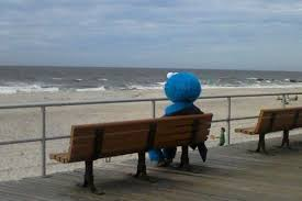 Monster Bench Cookie Monster On The Beach Smiles For All Funny Photos