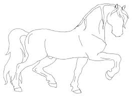 photos horse sketches and drawings outline drawing art gallery