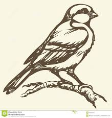 vector drawing small titmouse on a branch stock illustration
