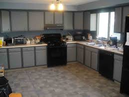 Painted Kitchen Cabinet Color Ideas Kitchen Cabinets Painted Ideas House Design And Planning