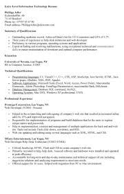 Entry Level It Resume Examples by Entry Level It Tech Resume