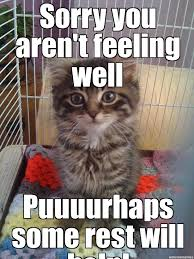 Well Meme - 20 cutest memes for your sick friend sayingimages com