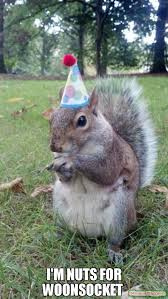 Squirrel Nuts Meme - i m nuts for woonsocket meme super birthday squirrel 59234