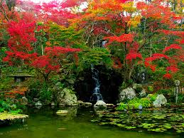 www flowers japanese garden pictures japan garden flowers photo