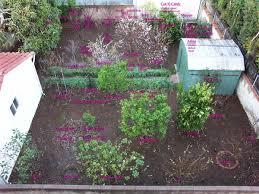 compact orchard dave wilson nursery backyard orchard culture
