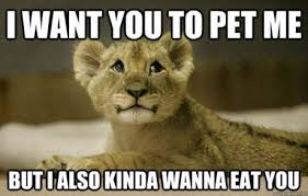 Eat Me Meme - post 12612 justpost virtually entertaining