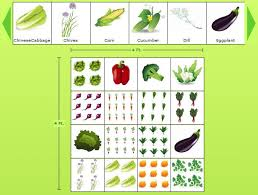 garden layout planner free planning a garden layout with free software and veggie garden