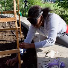 zukes cukes pumpkins u0026 peas 1st garden planting colorado