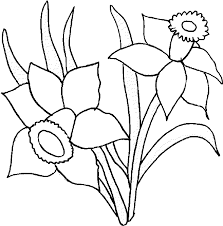 flower coloring pages daffodil coloring flower coloring